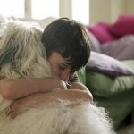 dogs, dogs reduce child anxiety, anxiety and dogs, childhood anxiety, pet dogs, study shows children confide in pets over parents, children and their pets